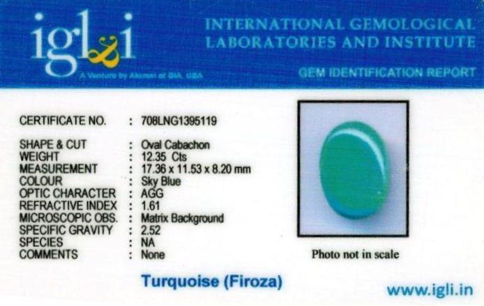 14-ratti-certified-turquoise-firoza-stone Certificate (ID-148)