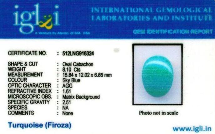 9.25-ratti-certified-turquoise-firoza-stone Certificate (ID-151)