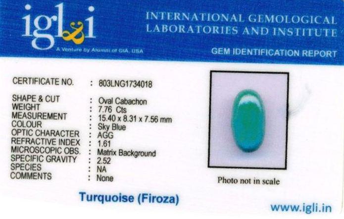 9-ratti-certified-turquoise-firoza-stone Certificate (ID-134)