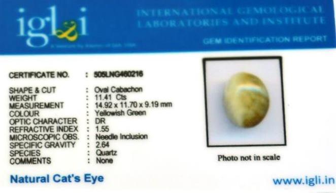 12.68-ratti-certified-catseye-stone Certificate (ID-111)