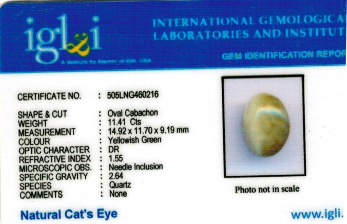12.22-ratti-certified-cateye-gemstone Certificate (ID-107)