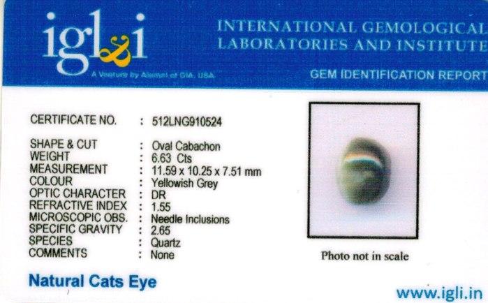 6.67-ratti-certified-cateye-gemstone Certificate (ID-102)