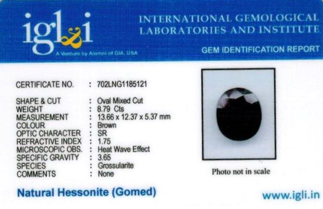 9.77-ratti-certified-hessonite-gomed-stone Certificate (ID-136)