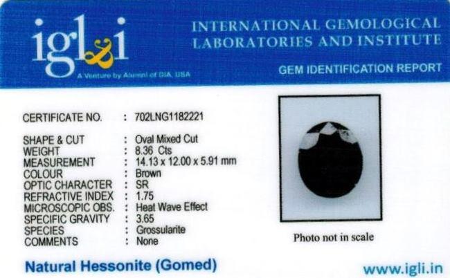 9.29-ratti-certified-hessonite-gomed-stone Certificate (ID-133)