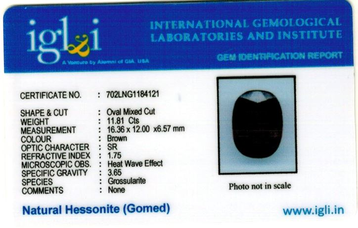 13.25-ratti-certified-hessonite-gomed-stone Certificate (ID-140)