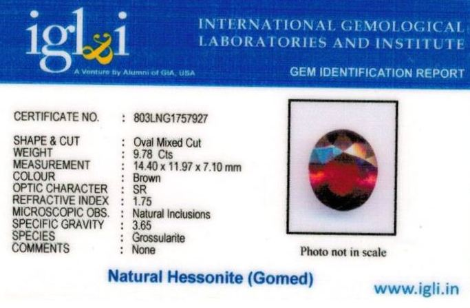 11-ratti-certified-hessonite-gomed-stone Certificate (ID-192)