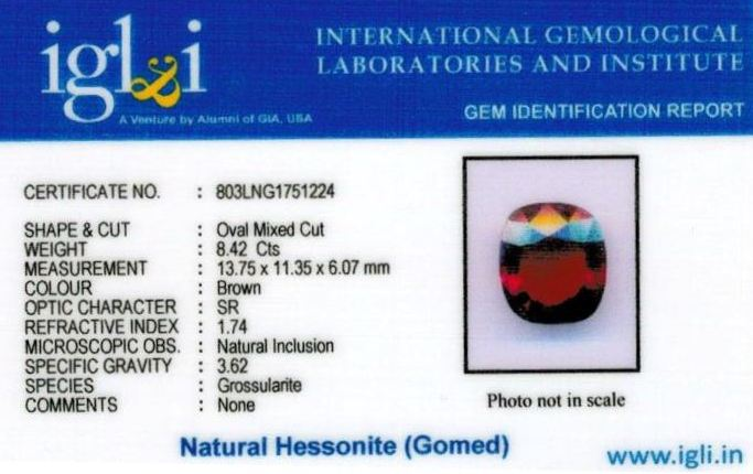 9.25-ratti-certified-hessonite-gomed-stone Certificate (ID-179)