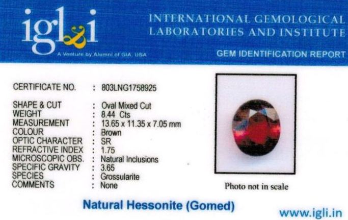 9.25-ratti-certified-hessonite-gomed-stone Certificate (ID-181)