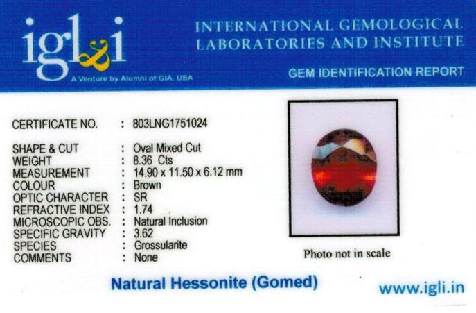 9.25-ratti-certified-hessonite-gomed-stone Certificate (ID-195)