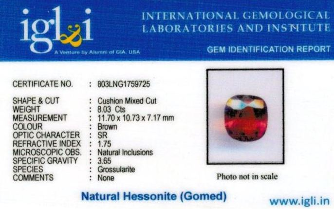 9-ratti-certified-hessonite-gomed-stone Certificate (ID-196)