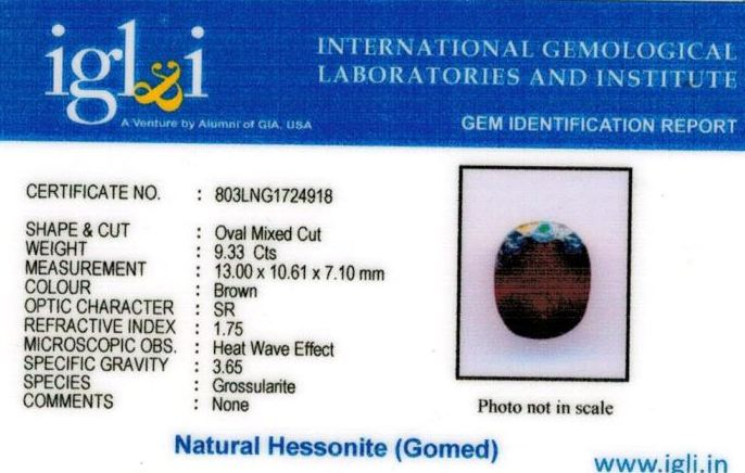 10.25-ratti-certified-hessonite-gomed-stone Certificate (ID-219)