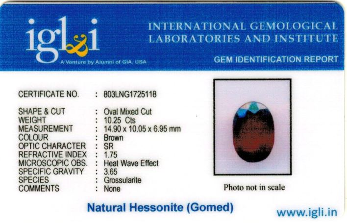 11.25-ratti-certified-hessonite-gomed-stone Certificate (ID-202)