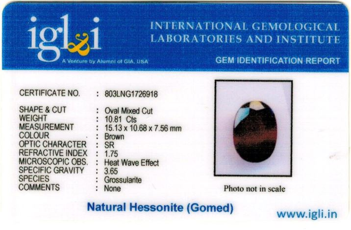 12.25-ratti-certified-hessonite-gomed-stone Certificate (ID-204)