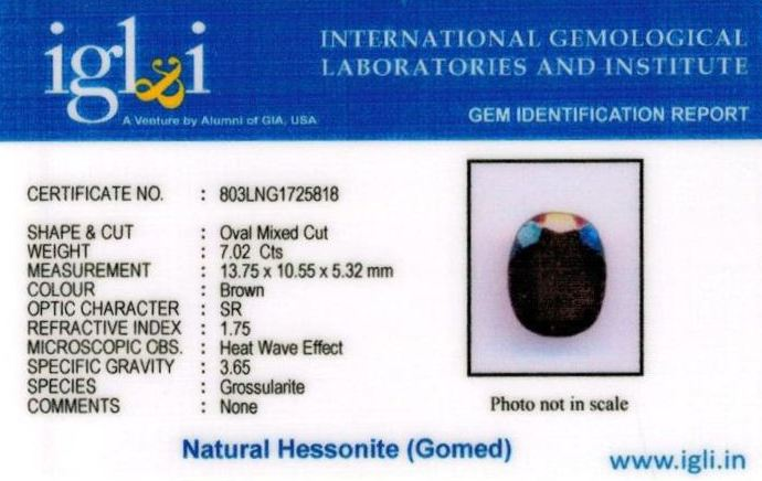 8-ratti-certified-hessonite-gomed-stone Certificate (ID-209)