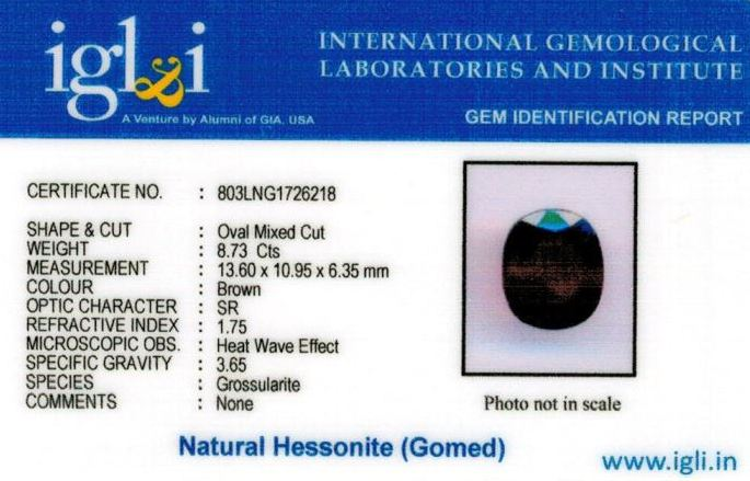 10-ratti-certified-hessonite-gomed-stone Certificate (ID-213)