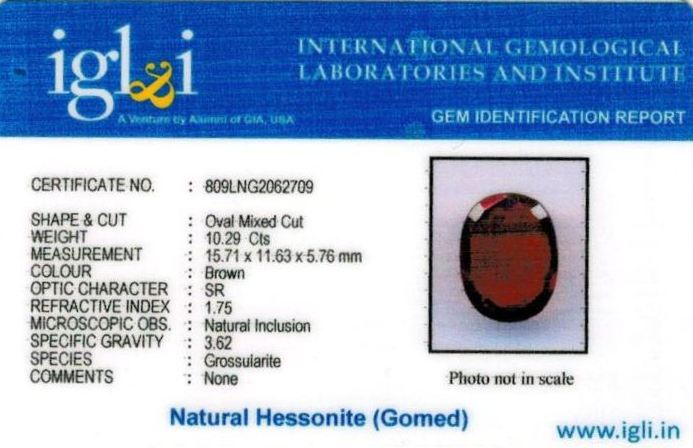 11.25-ratti-certified-hessonite-gomed-stone Certificate (ID-247)