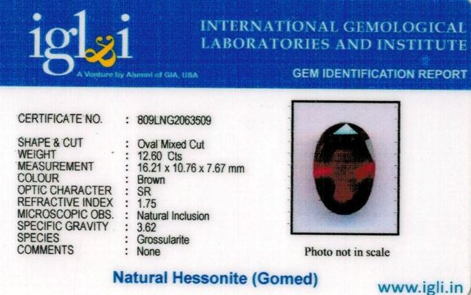 14.25-ratti-certified-hessonite-gomed-stone Certificate (ID-239)