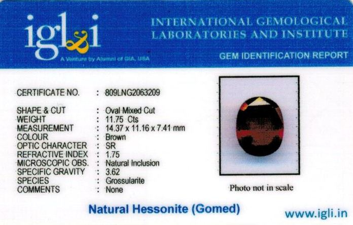 13.25-ratti-certified-hessonite-gomed-stone Certificate (ID-248)