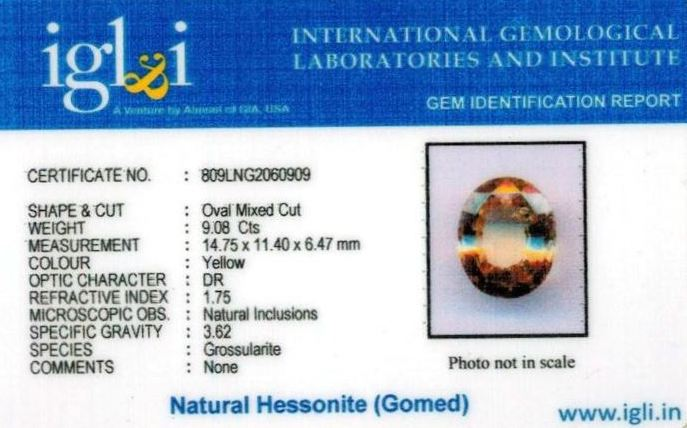 10.25-ratti-certified-yellow-hessonite-gomed Certificate (ID-279)