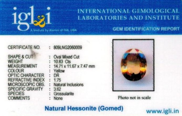 12.25-ratti-certified-yellow-hessonite-gomed Certificate (ID-264)