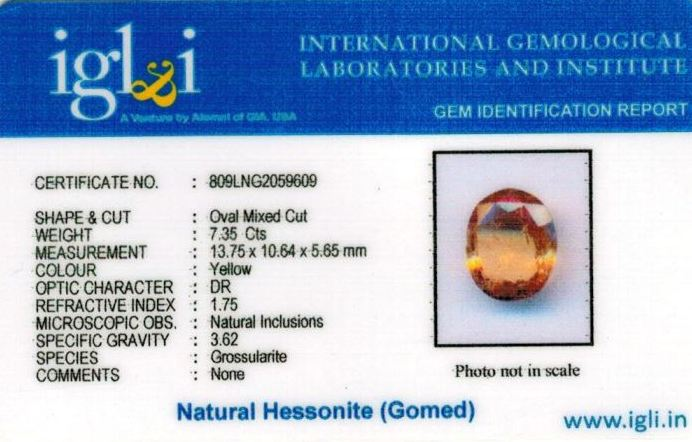 8.25-ratti-certified-yellow-hessonite-gomed Certificate (ID-269)