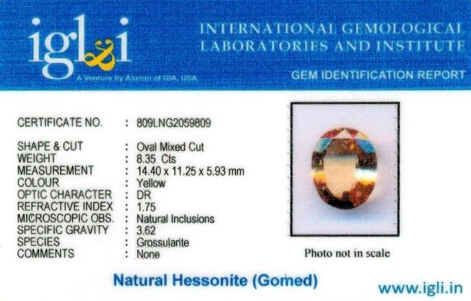 9.25-ratti-certified-yellow-hessonite-gomed Certificate (ID-275)