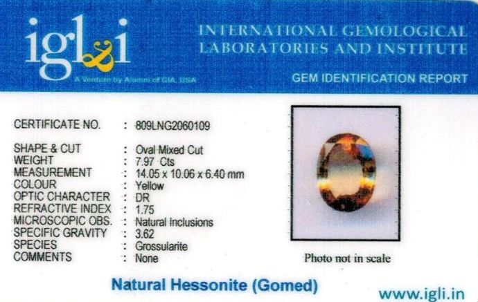 9-ratti-certified-yellow-hessonite-gomed Certificate (ID-272)