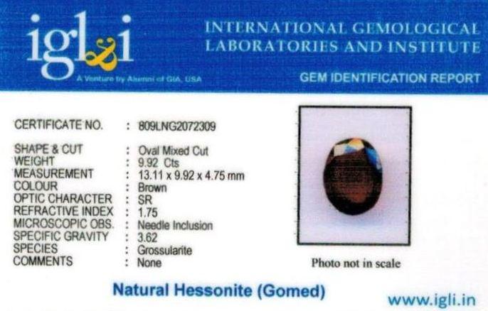 11.25-ratti-certified-hessonite-gomed Certificate (ID-313)