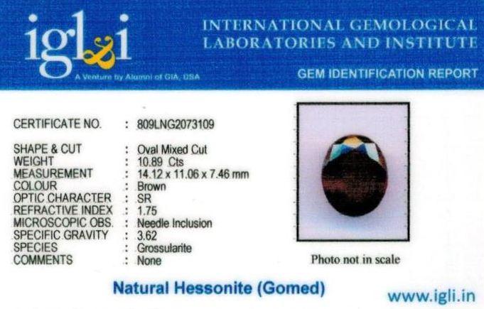 12.25-ratti-certified-hessonite-gomed Certificate (ID-285)