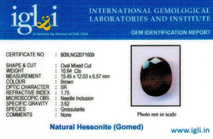 12-ratti-certified-hessonite-gomed Certificate (ID-282)