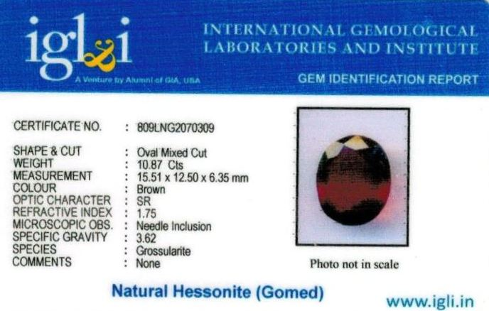 12.25-ratti-certified-hessonite-gomed Certificate (ID-284)