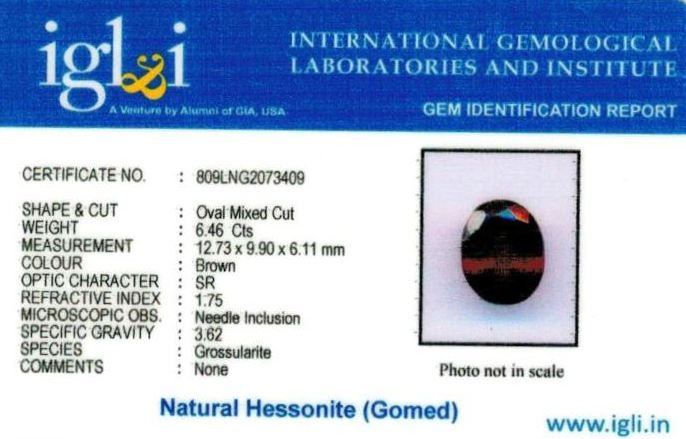 7.25-ratti-certified-hessonite-gomed Certificate (ID-291)