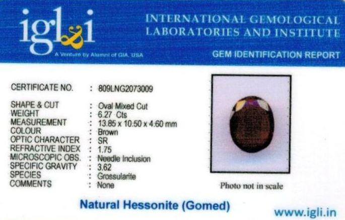 7-ratti-certified-hessonite-gomed Certificate (ID-290)