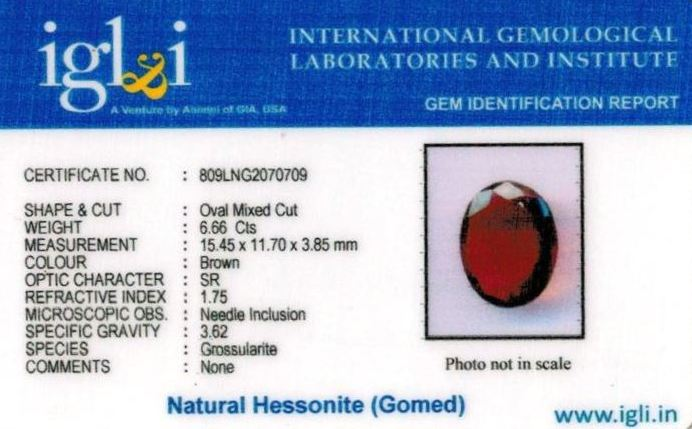 7.25-ratti-certified-hessonite-gomed Certificate (ID-292)