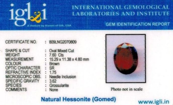 8.25-ratti-certified-hessonite-gomed Certificate (ID-299)
