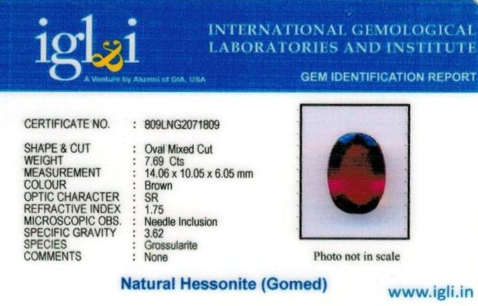 9-ratti-certified-hessonite-gomed Certificate (ID-301)