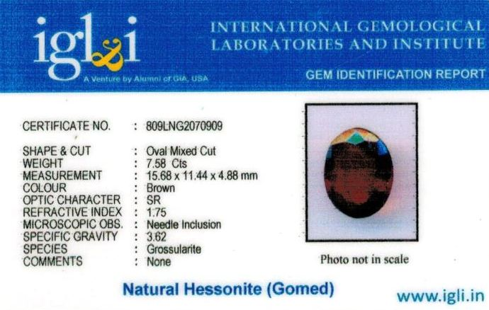8.25-ratti-certified-hessonite-gomed Certificate (ID-298)