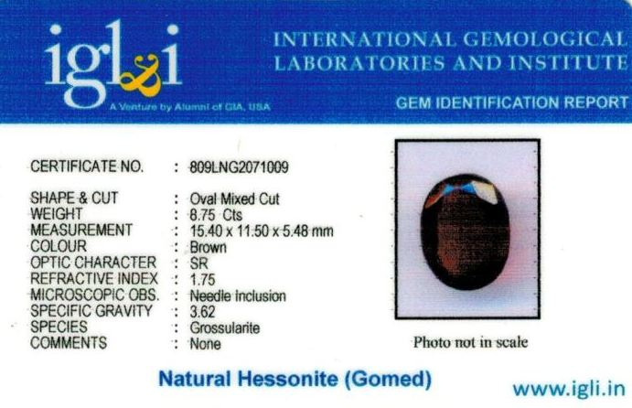 10-ratti-certified-hessonite-gomed Certificate (ID-305)