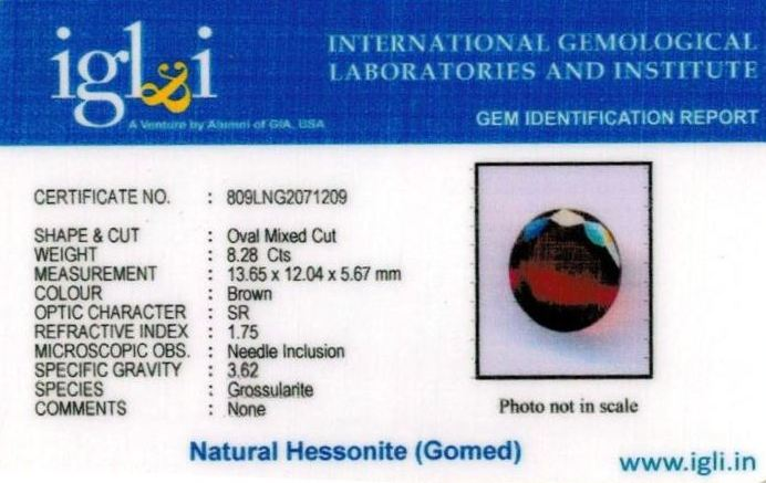 9.25-ratti-certified-hessonite-gomed Certificate (ID-304)