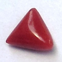 Buy Triangular Red-Coral Online