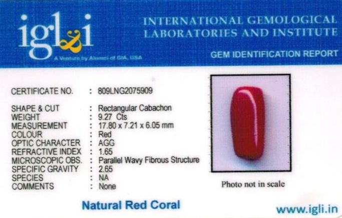 10.25-ratti-certified-red-coral-stone Certificate (ID-303)