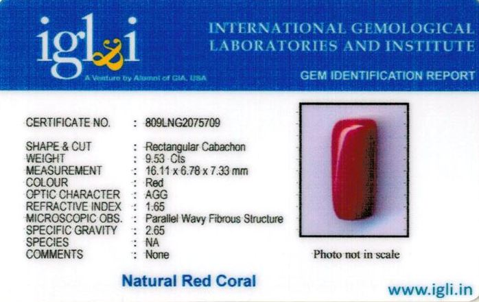 11-ratti-certified-red-coral-stone Certificate (ID-305)