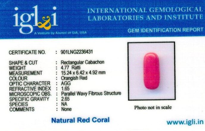 5-ratti-certified-red-coral Certificate (ID-307)