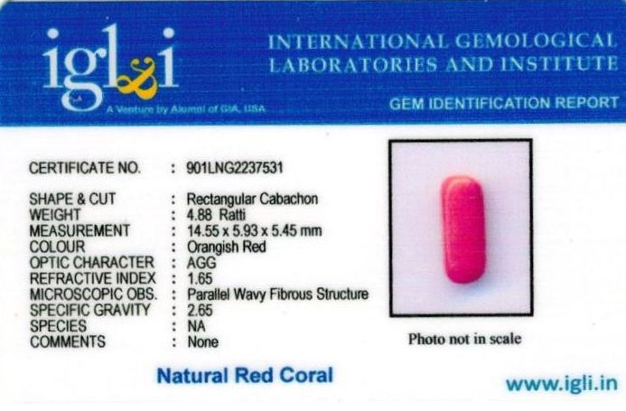 5-ratti-certified-red-coral Certificate (ID-309)