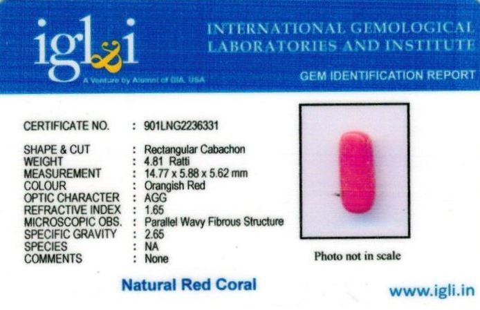 5-ratti-certified-red-coral Certificate (ID-308)
