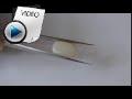 9.36 Carat White Opal Stone Video