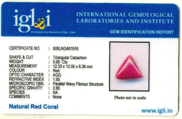 6.22-ratti-certified-triangular-red-coral-gemstone Certificate (ID-102)