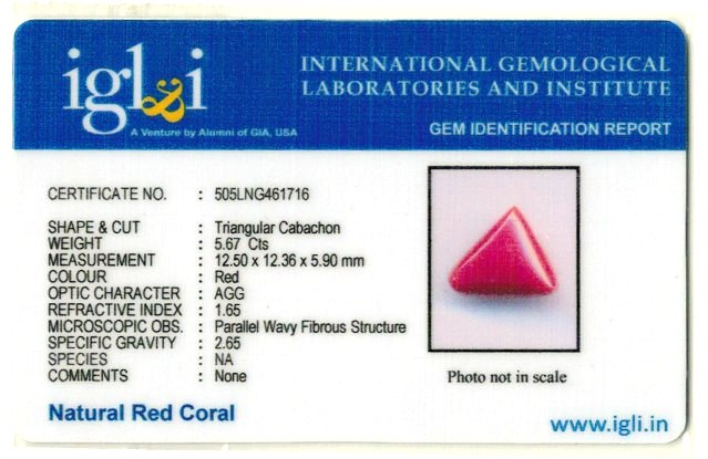 6.3-ratti-certified-triangular-red-coral-gemstone Certificate (ID-103)