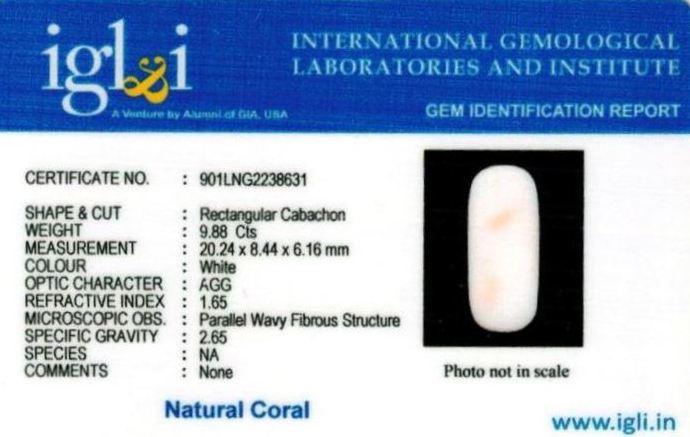 11-ratti-certified-whitecoral Certificate (ID-125)