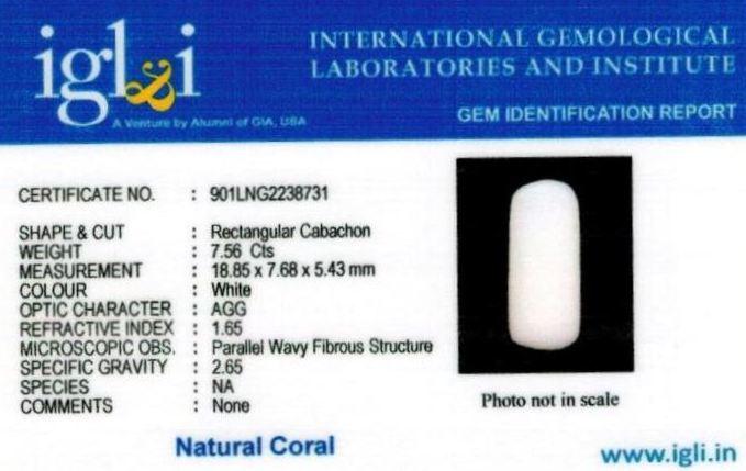 8.25-ratti-certified-whitecoral Certificate (ID-110)